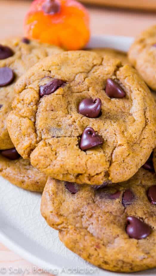 Sallys-Baking-Addiction-Pumpkin-Chocolate-Chip-Cookies-12