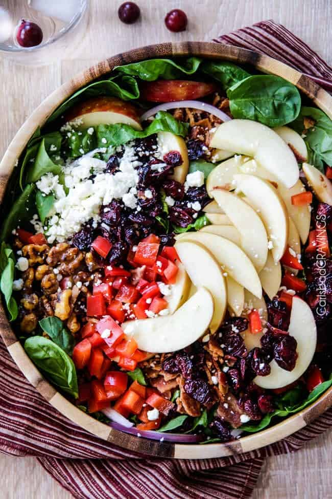 Apple-bacon-cranberry-salad-with-apple-poppyseed-dressing-12