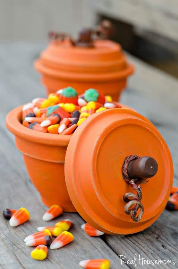 DIY-Pumpkin-Terracotta-Pots-6