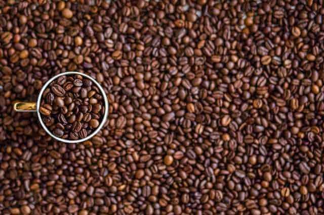 coffee tastes like starbucks