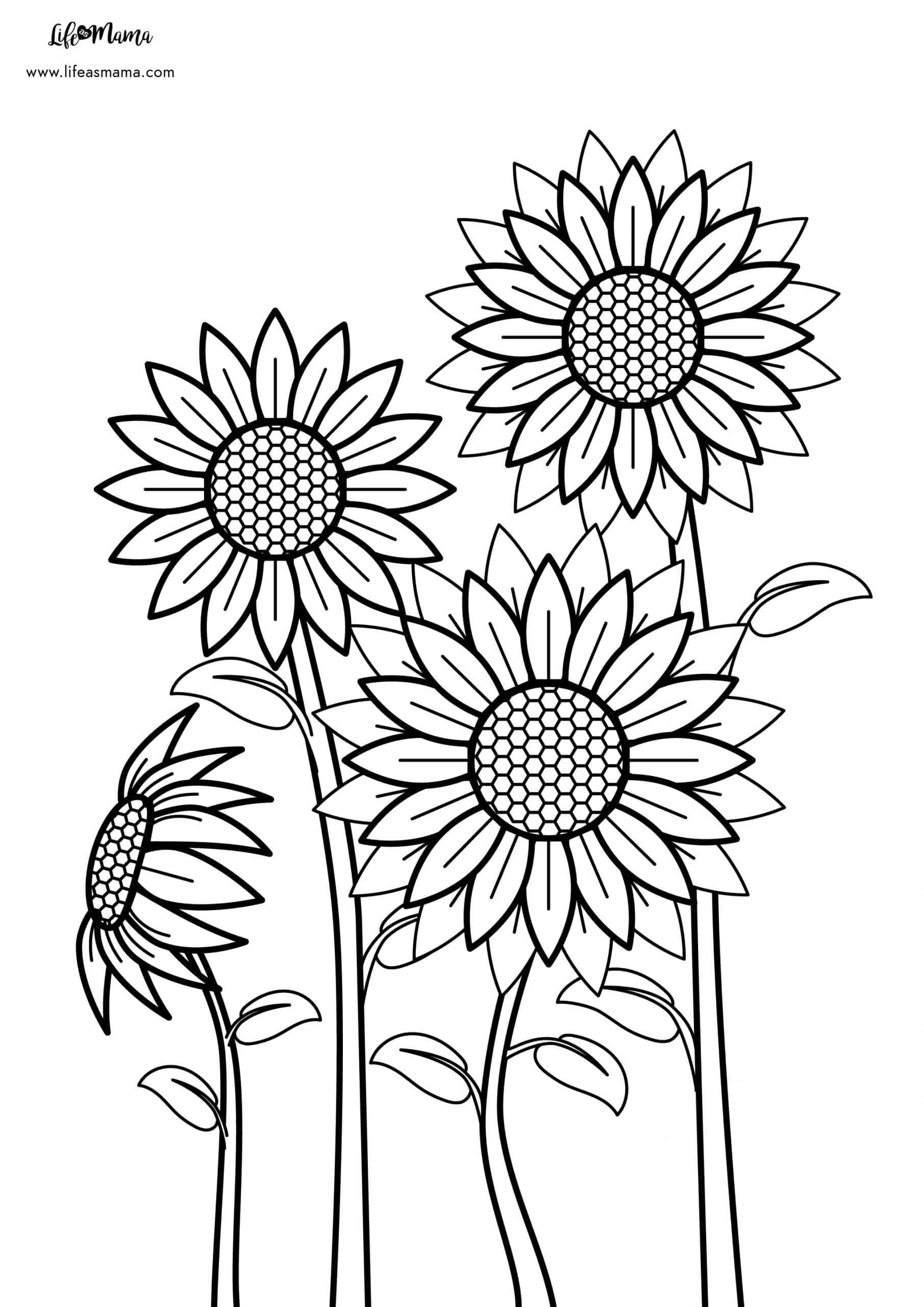 flowers, free printable