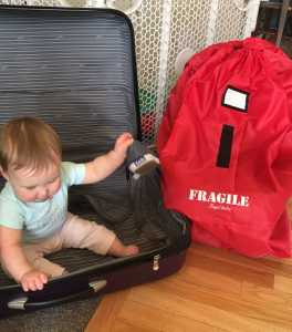 Mama Bear Reviews – Angel Baby Car Seat Travel Bag & Fam Fave Thermometer