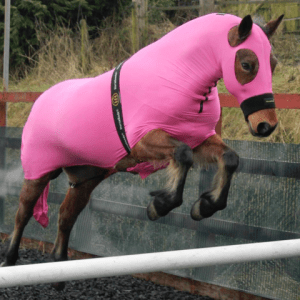 Horzehoods Full Body Suit in Pink