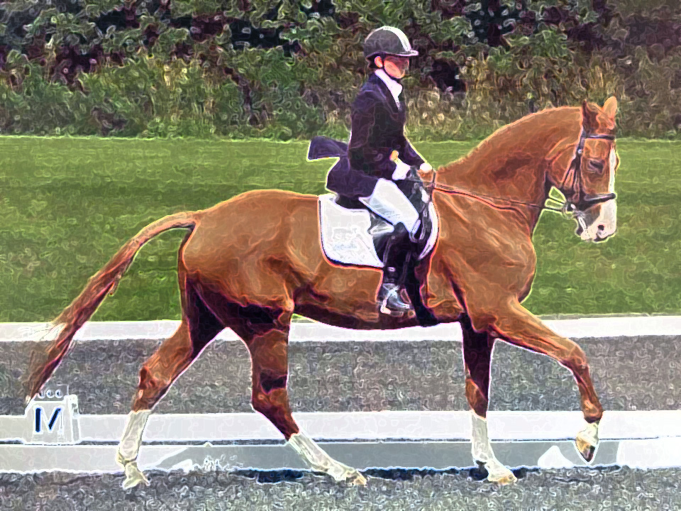 Ralph and Francesca Dressage Painting Style