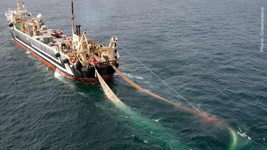 What is to be done with super-trawlers?