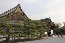 Ninomaru Palace in Nijo Castle