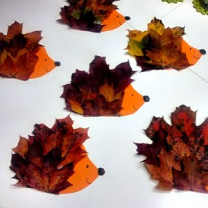 hedgehog-craft-using-leaves1