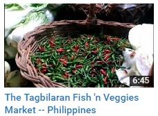 bohol tagbilaran market fish philippines