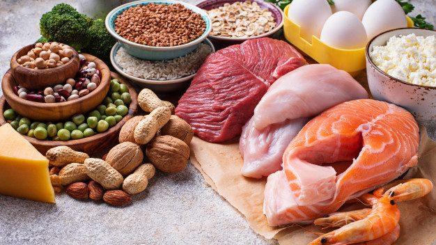 蛋白質的4大作用