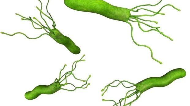 幽門螺旋桿菌