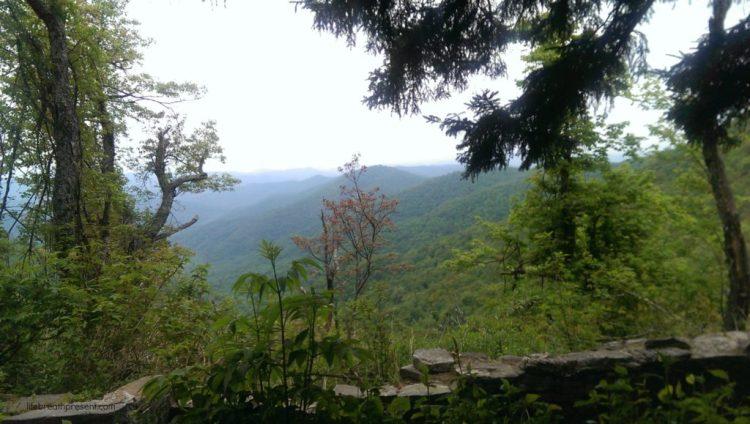 Buck Springs Gap Overlook - Blueridge Parkway, Pisgah National Forest