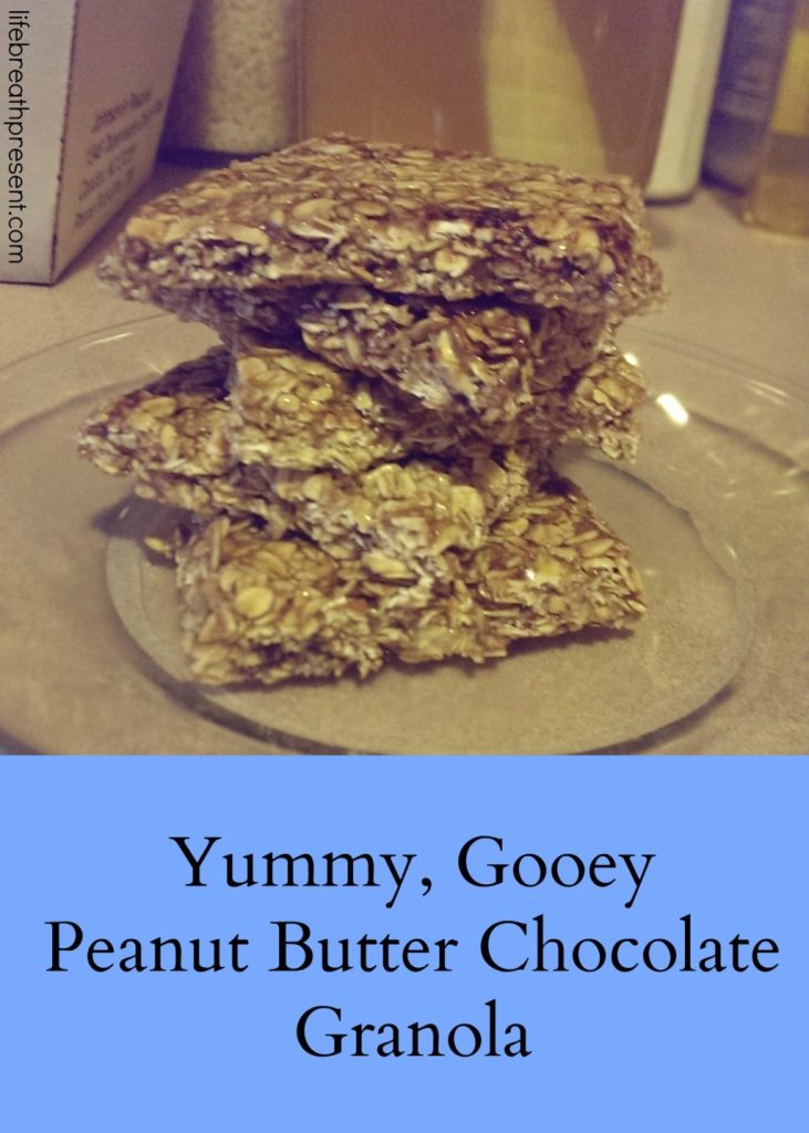 yummy, gooey, peanut butter, chocolate, granola, granola bars, homemade granola