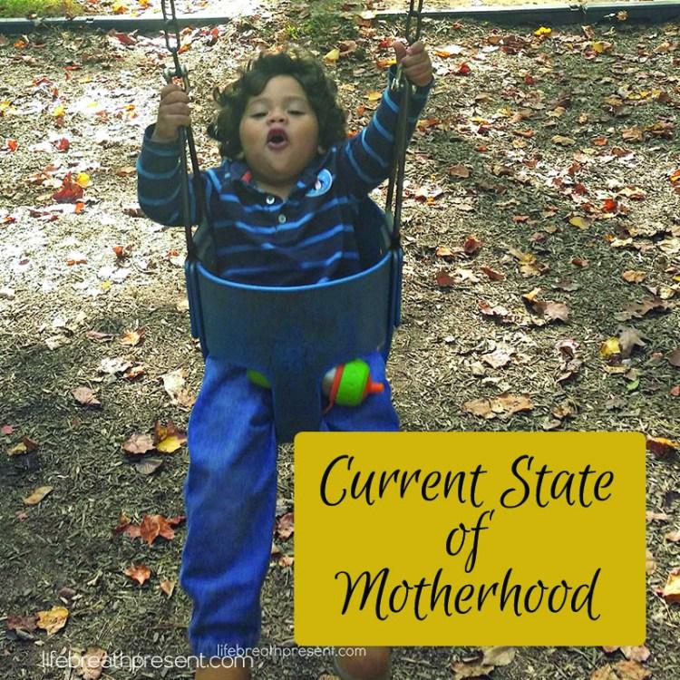 motherhood, monkey boy, mothering, parenting, guest post, current state