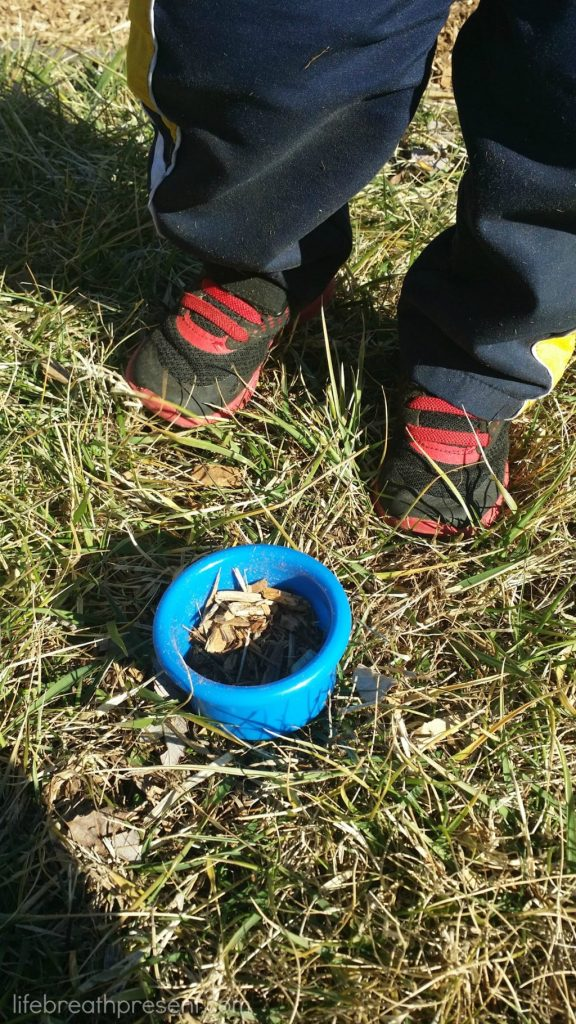collecting dirt, play, playing, park, fun, toddler,