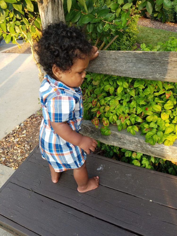 7 months, baby, growing, growing up, playing, modeling, fun, family