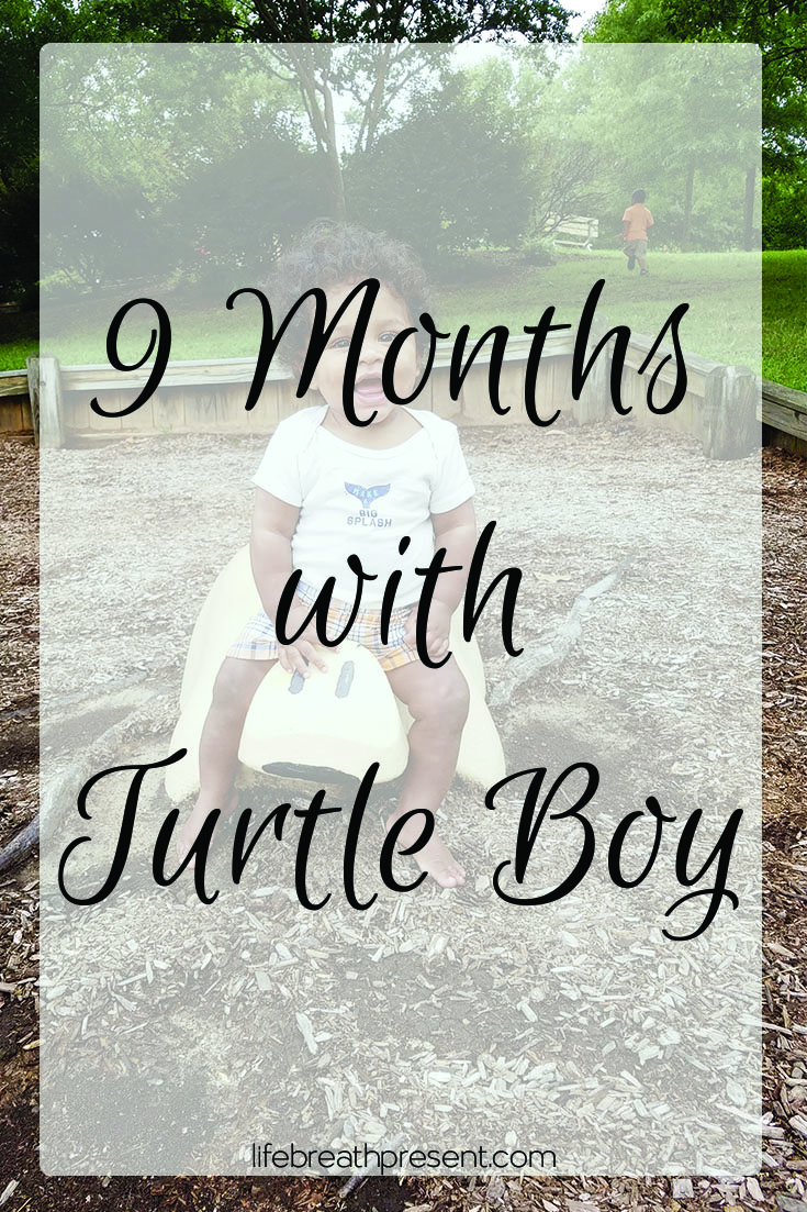 turtle boy, 9 months, baby, growing, growing up, family, play, park, fun