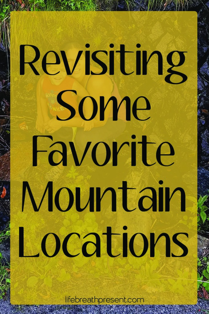 learning, travel, adventure, family, history, mountains, roan mountain