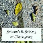 Reflecting, Loss, Thanksgiving, and Gratitude