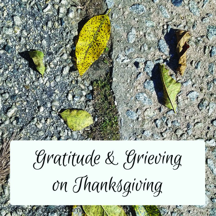 grief, loss, reflection, gratitude, grieving, thanksgiving, holidays, family