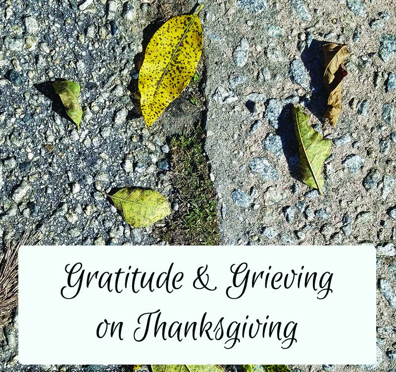 Reflecting, Loss, Thanksgiving, and Gratitude