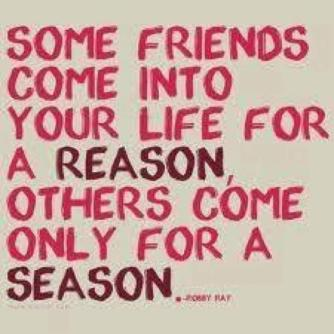 some-friends-come-into-your-life-for-a-reason-others-come-only-for-a-season-friendship-quote