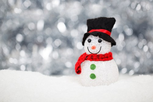 Christmas holiday snow man snowman
