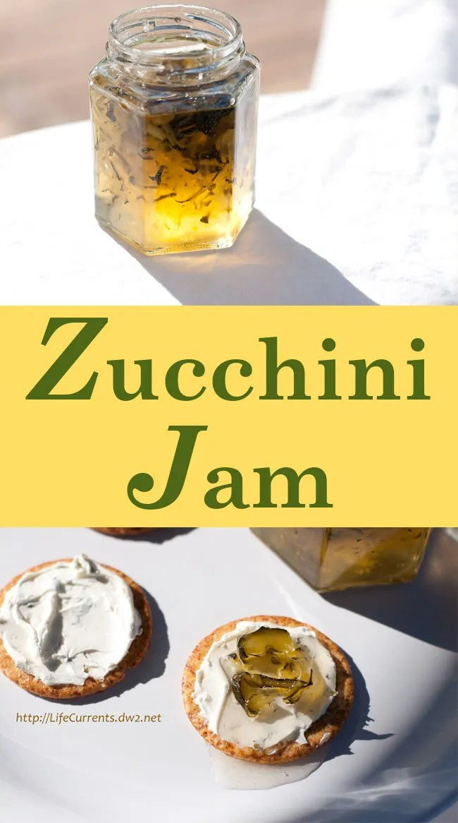 Zucchini Jam with a kick of Anaheim Chiles, this savory spread is part jam part pickle and all delicious! Serve it on crackers with cream cheese for a fun finger food appetizer. Or, spread it on a sandwich. long pin
