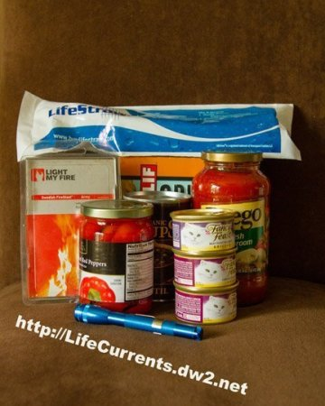 Emergency Preparedness by Life Currents https://lifecurrentsblog.com