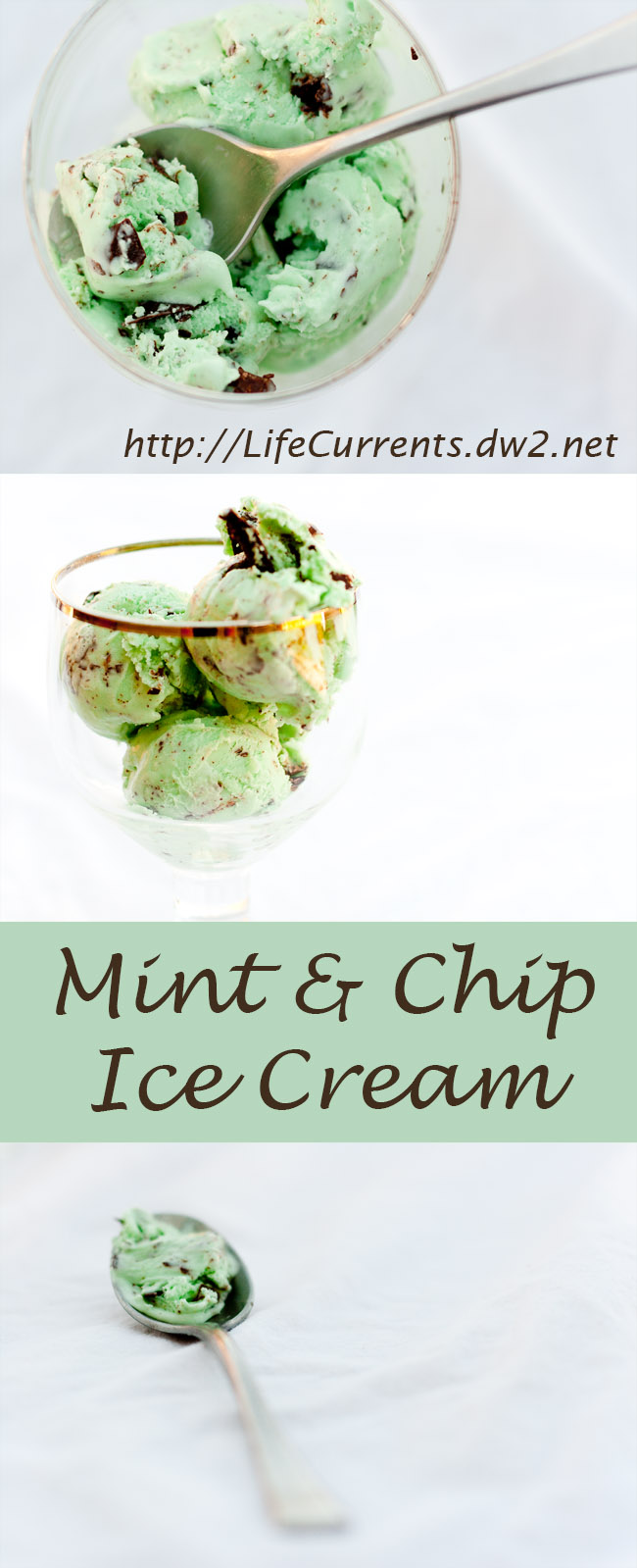 This is the classic mint chocolate chip ice cream. Sweet. Simple. Minty, but not too much overpowering mint
