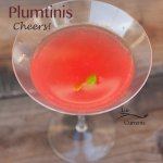 Plumtini. Great for sipping on a hot summer day