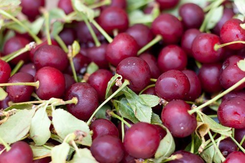 Small Batch Tart Cherry-Lime Jam Recipe breakfast