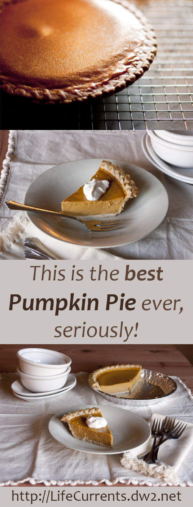This is the best Pumpkin Pie! Make your own this Thanksgiving and Christmas, you'll be happy you did!