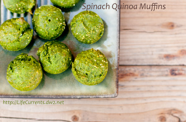 "Spinach Quinoa Muffins: I'd like to call these Spinach Quinoa Muffins, ""Oscar The Grouch Muffins"". Green and kind of gruff looking, but ultimately lovable and yummy! Life Currents #quinoa #muffins #green https://lifecurrentsblog.com"