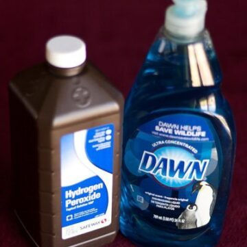 hydrogen peroxide and dawn