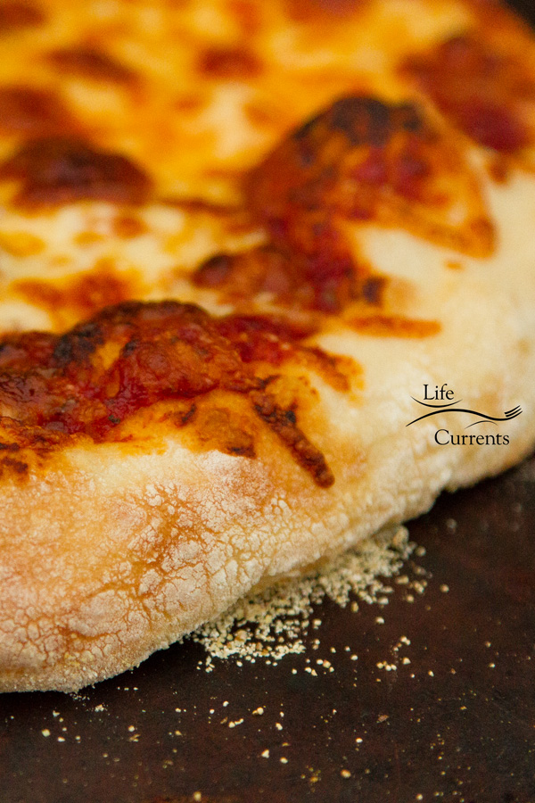 close up of HOMEMADE THIN CRUST PIZZA on a piiza stone