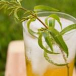 Lemon Verbena Lemongrass Soda https://lifecurrentsblog.com