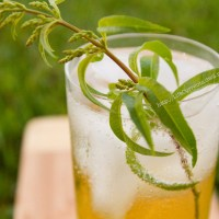 Lemon Verbena and Basil Simple Syrups