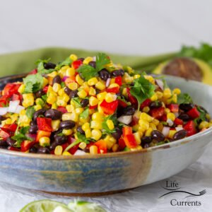 square crop of corn salad with black beans.