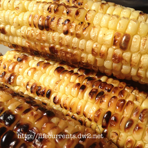 Grilled Corn on the Cob | Life Currents