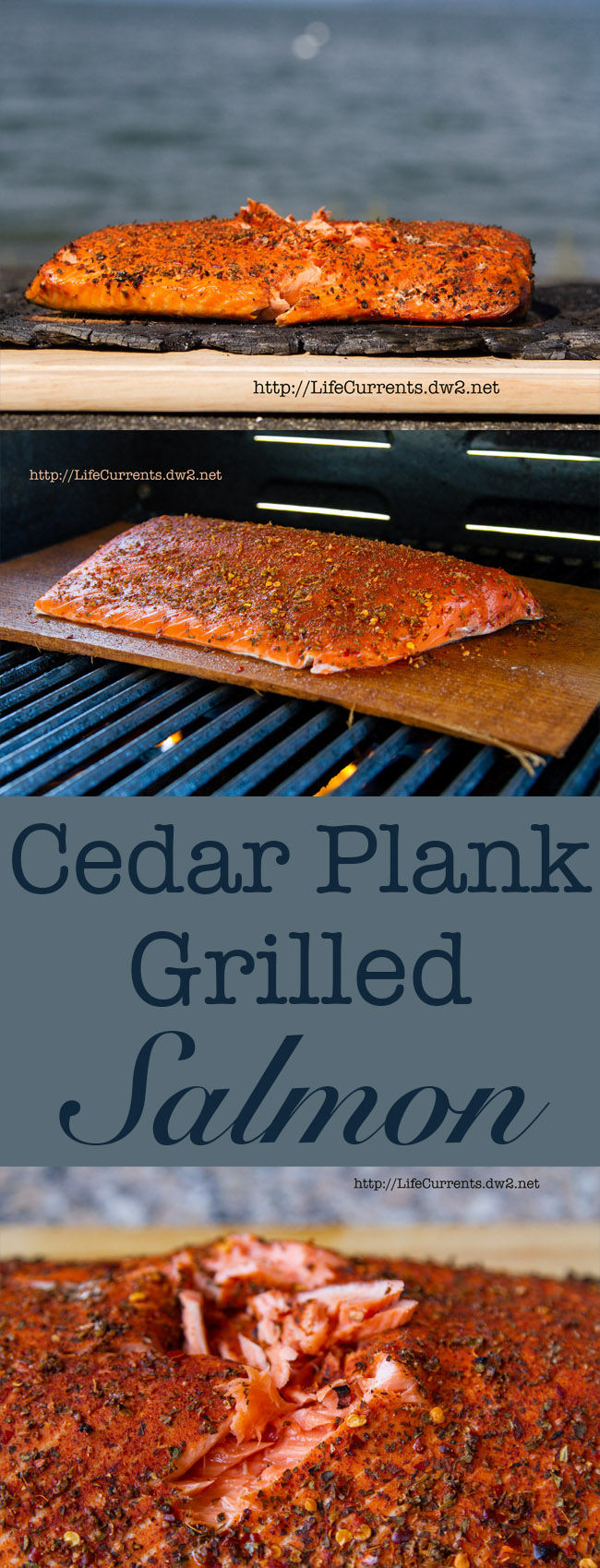 Cedar Plank Grilled Salmon - how to grill salmon on a cedar l=plank, all the tips and tricks you'll need to create a delicious dinner!
