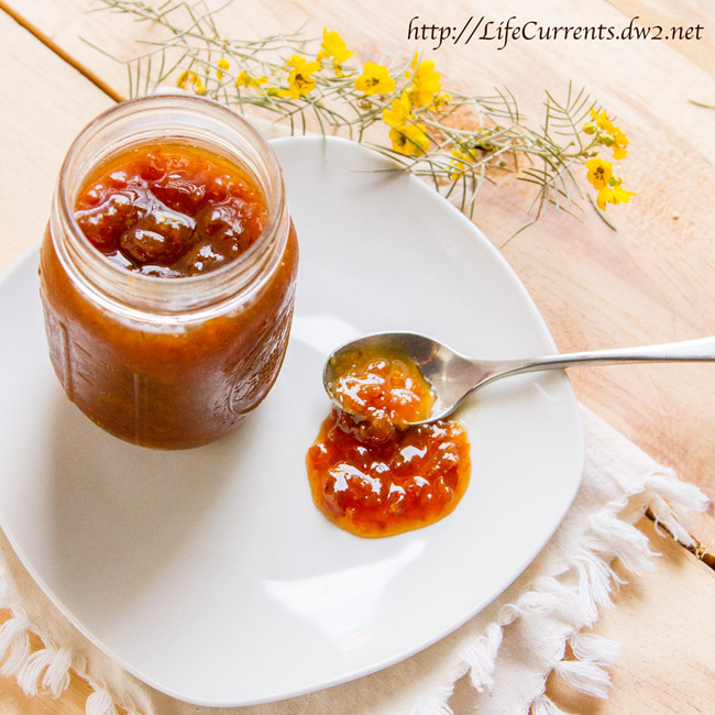 Dried Apricot Jam by Life Currents