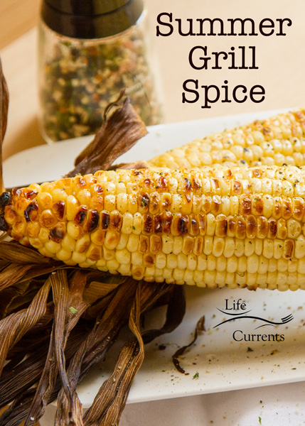 Summer Grill Spice Blend for all your summer BBQ needs!