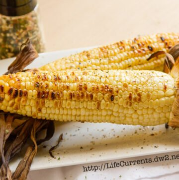 corn on the cob, grilled, with the husks on.