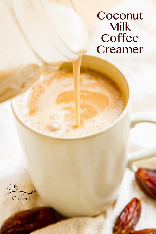 Coconut Milk Coffee Creamer. This creamer is vegan, gluten-free, paleo-friendly, no processed sugar, no preservatives, healthy fats from whole foods, free from trans-fats, and (most important) super tasty! And, it's a great way to give up processed sugar and dairy from your morning coffee.