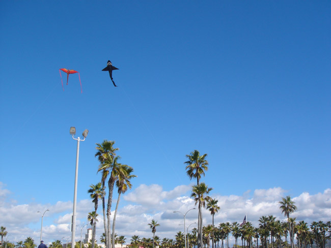 5 Can't Miss Vacation Activities in Newport Beach: Go fly a kite
