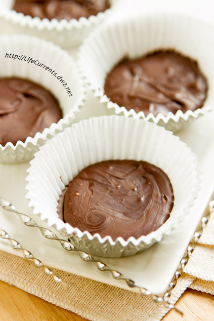 Welcome to our Virtual Cookie Exchange with an awesome recipe for Peppermint Patties --- Only 3 ingredients, no baking, and quick to make! But best of all, super delicious! And no high fructose corn syrup, no weird unpronounceable ingredients. https://lifecurrentsblog.com/