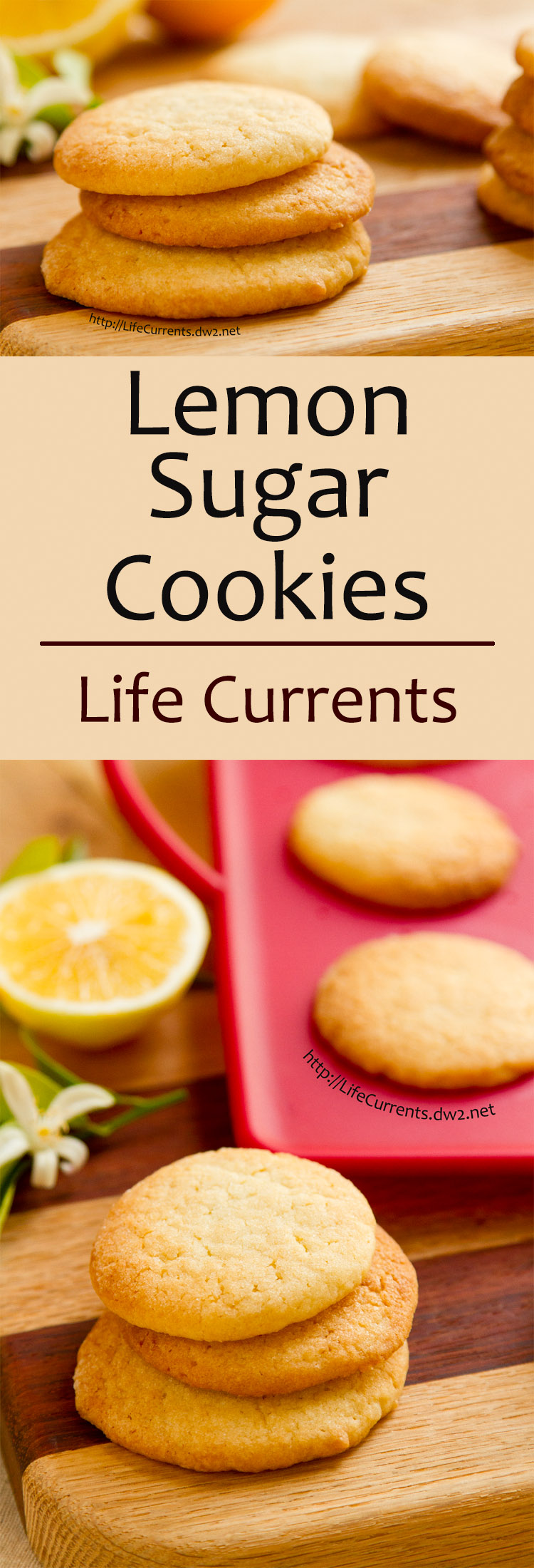 These light little Lemon Sugar Cookies are the perfect sweet treat; they're so easy to eat and everyone loves them! by Life Currents