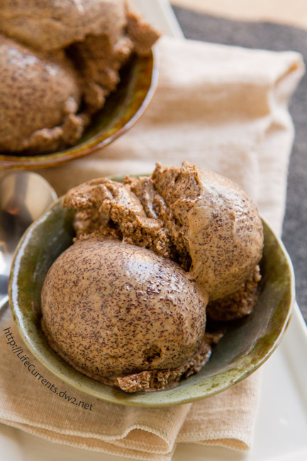 Mocha Frozen Yogurt -- Sometimes a recipe comes out so yummy that I simply can't wait to devour all of it! This one is like that. I had a hard time waiting to take the photos because I wanted to eat all of this Mocha Frozen Yogurt! Make this for yourself, soon!! You'll be happy you did! #ad #soyfoodsmonth