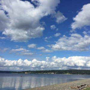 Great Places to Eat on Whidbey Island