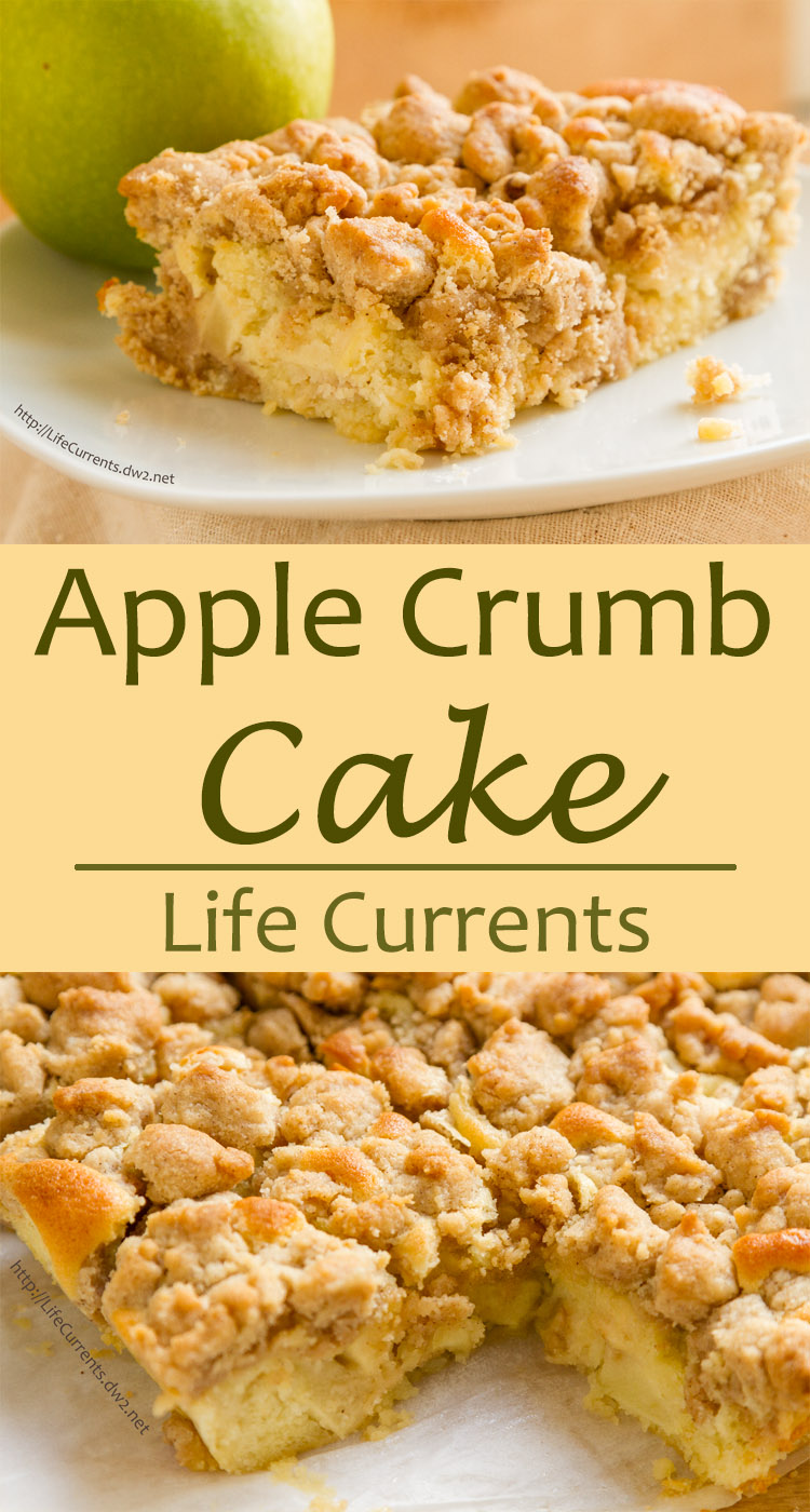 Soft vanilla butter cake with a cinnamon crumble topping and tart yummy apple chunks inside. It's the perfect cake. Not too sweet, not dry at all. Full of flavor.